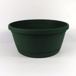 Rumba zelená