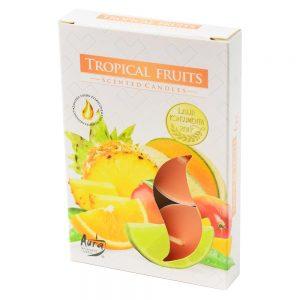 čajové sviečky 6ks tropické ovocie