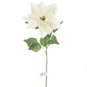 Vianočná ruža biela zasnežená 70cm