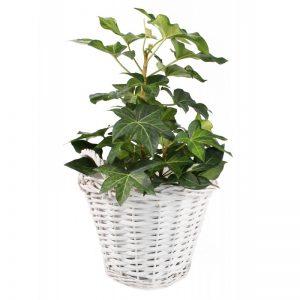 Prútený košík na kvety biely vysoký kruh s rúčkami