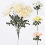 Kytica chryzantéma bledá