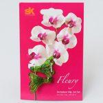Štipce na orchidee zelené 2ks